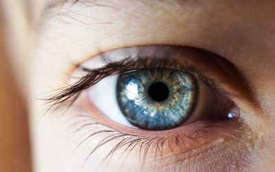 Conade pede veto a PL que classifica visão monocular como deficiência